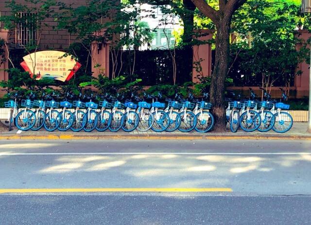 中国のシェア自転車の景観