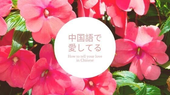 中国語で愛してる