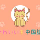 「可愛い」の中国語を上海出身女子大生がイラスト付きで解説!